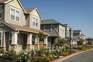 Neighborhood of peaceful homes