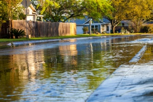 """street that is flooded where the owners are asking """"How much does flood insurance cost"""""""